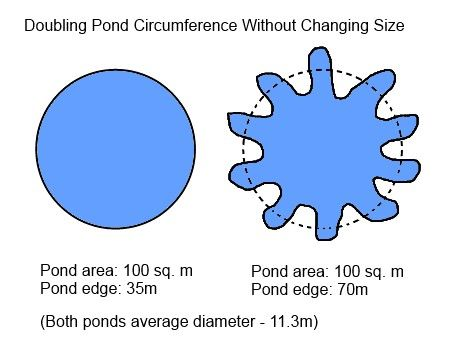 Pond edge diagram