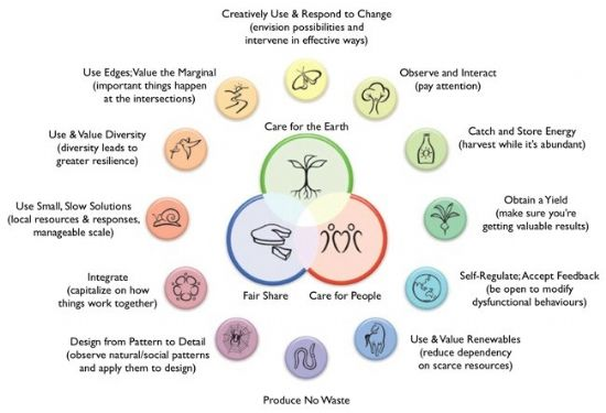 Permaculture principles diagram
